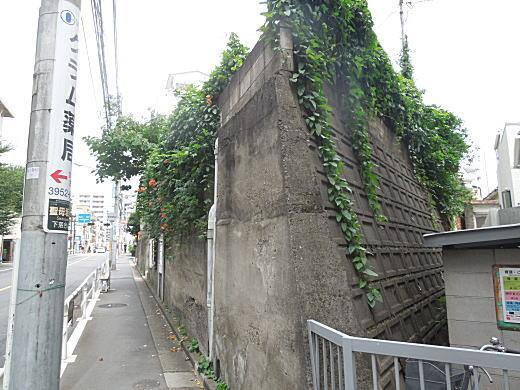 諏訪谷と聖母坂.JPG