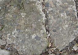 諏訪谷セメント塀.JPG