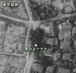 諏訪谷落雷ケヤキ.JPG