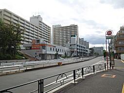 諏訪通り2.JPG