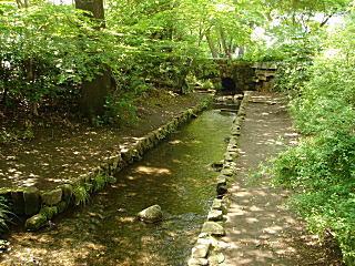 谷戸の渓流.JPG