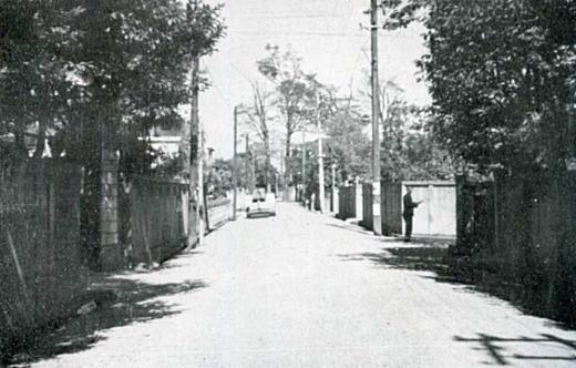 近衛町1955.jpg