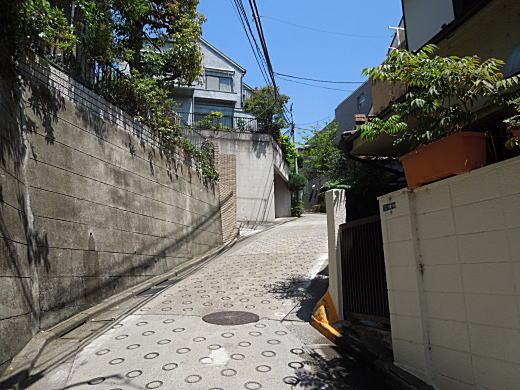 近衛町バッケ坂.jpg