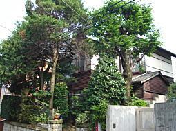 近衛町杉邸.JPG