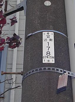 近衛線.jpg