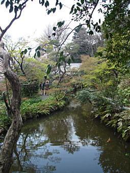 関口芭蕉庵5.JPG