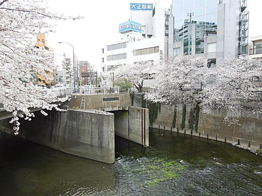 高戸橋1.JPG