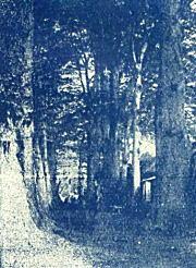 鬼子母神1919_2.jpg