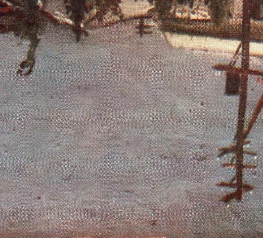 セメントの坪下A.jpg