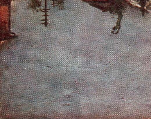 セメントの坪下C.jpg
