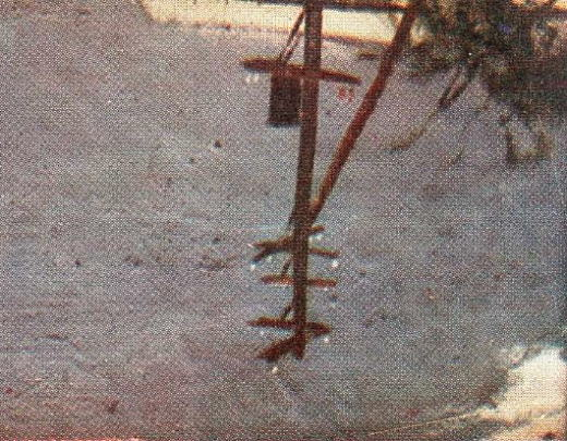 セメントの坪下E.jpg