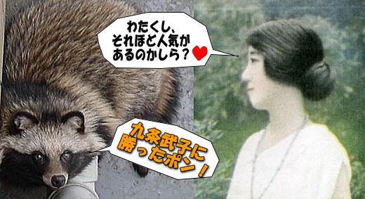 タヌキ+九条武子.jpg