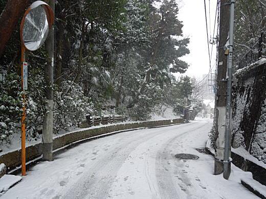 七曲坂雪.JPG