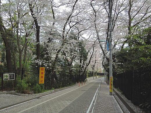 下落合風景04.JPG
