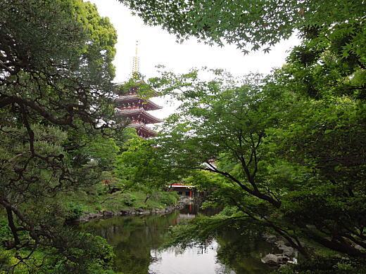 伝法院庭園02.JPG