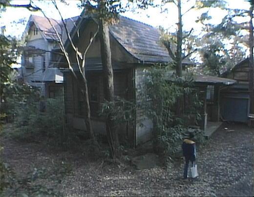 佐野善作邸4_1983.jpg