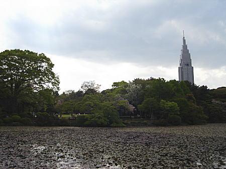 内藤家屋敷(新宿御苑).JPG