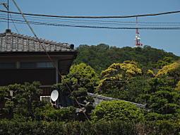 千畳敷山(湘南平).JPG
