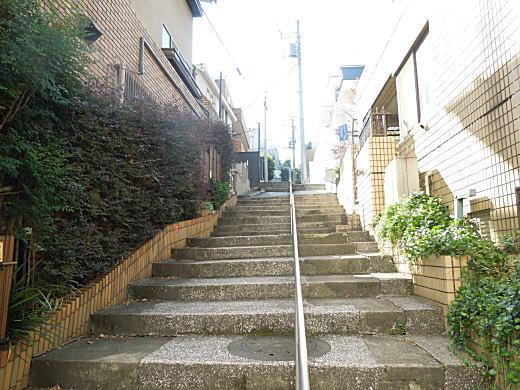南青山古墳バッケ階段.JPG