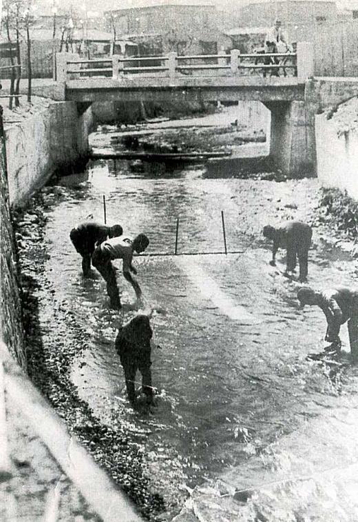 友禅染水洗い1938.jpg