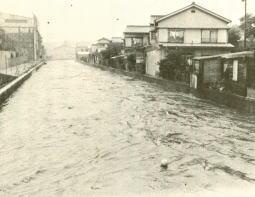 妙正寺川の氾濫.jpg