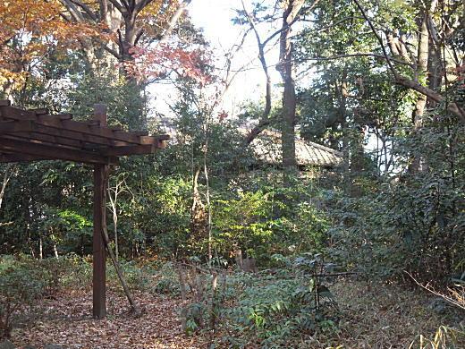 富士見茶屋1.JPG