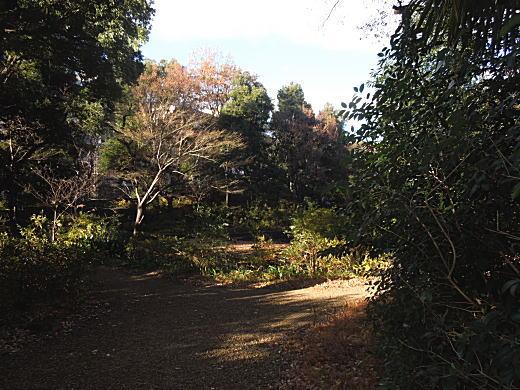 富士見茶屋4.JPG