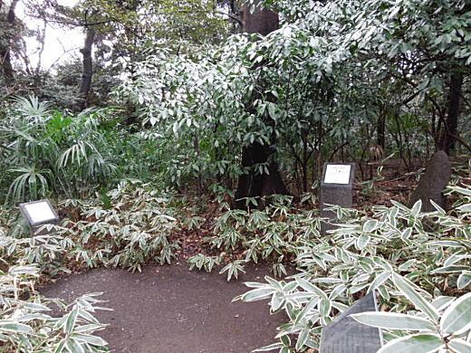 富士見茶屋跡.JPG