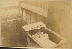 彩子様19290524.jpg