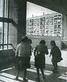 戸山ハイツ遊び1953.jpg