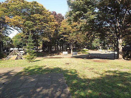 戸山ヶ原.JPG