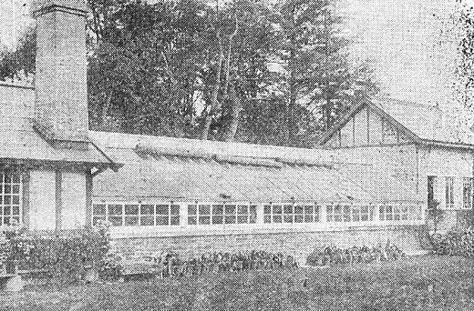 戸田邸大温室1919.jpg