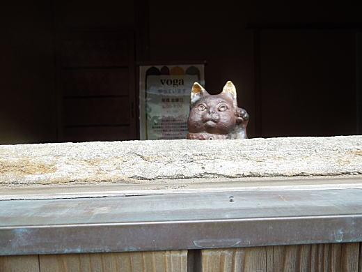 招き猫のぞく.jpg