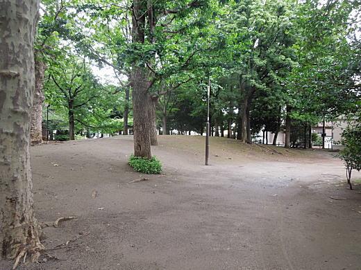 新井薬師公園1.JPG