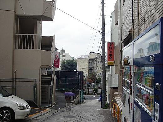 早稲田通り崖地.JPG
