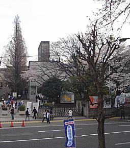 早稲田高等学院跡.jpg