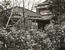 杉並馬橋の家.jpg