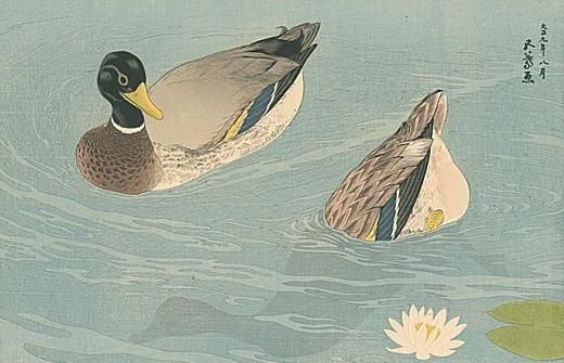 橋口五葉「鴨」1920.jpg