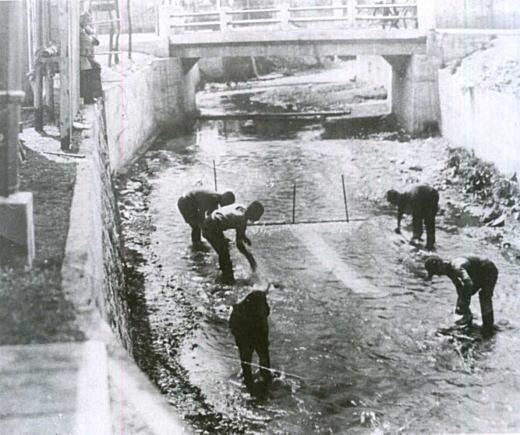 水洗い1938.jpg