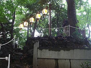 江古田富士1.JPG