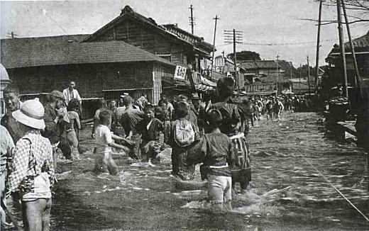 江戸川(神田川)1.jpg