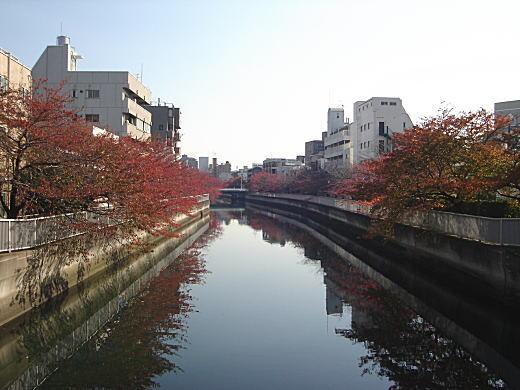 深川仙台堀.JPG