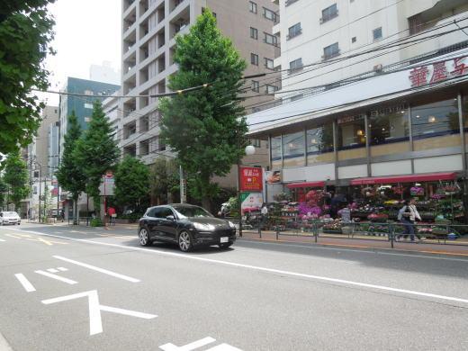 清戸道1.JPG
