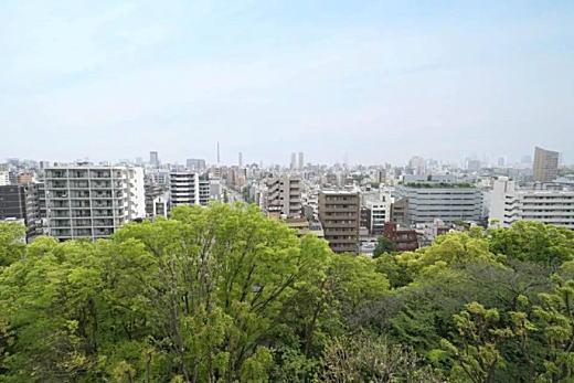 目白台アパート眺望1.jpg