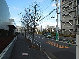 科学研究所05.JPG
