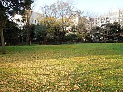 科学研究所14.JPG