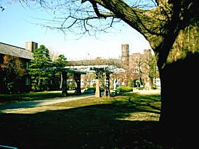 立教大学.JPG