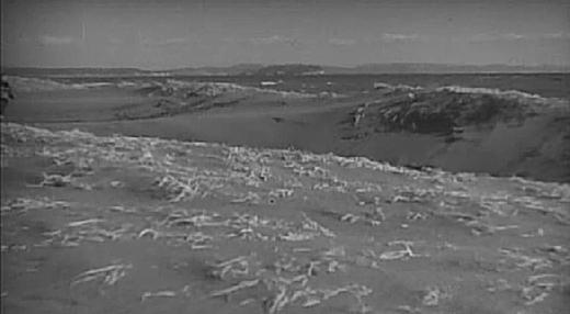 茅ヶ崎海岸2(長屋紳士録)1947.JPG