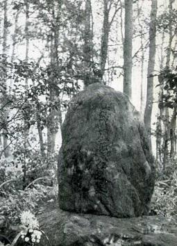 蘆花墓所1960頃.jpg