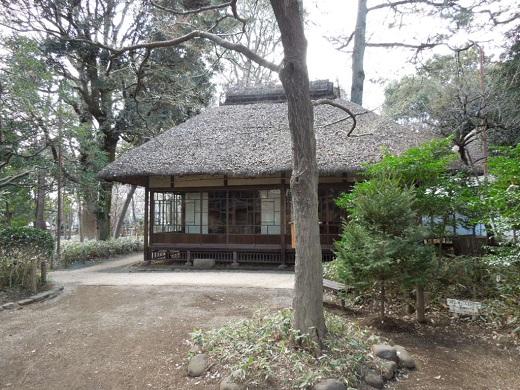 蘆花恒春公園.JPG